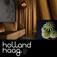 Holland Haag oscura